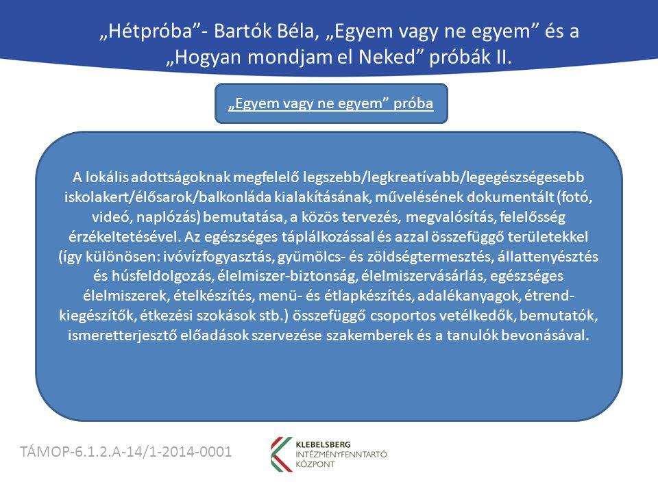 """TÁMOP-6.1.2.A-14/1-2014-0001 """"Hétpróba - Bartók Béla, """"Egyem vagy ne egyem és a """"Hogyan mondjam el Neked próbák II."""