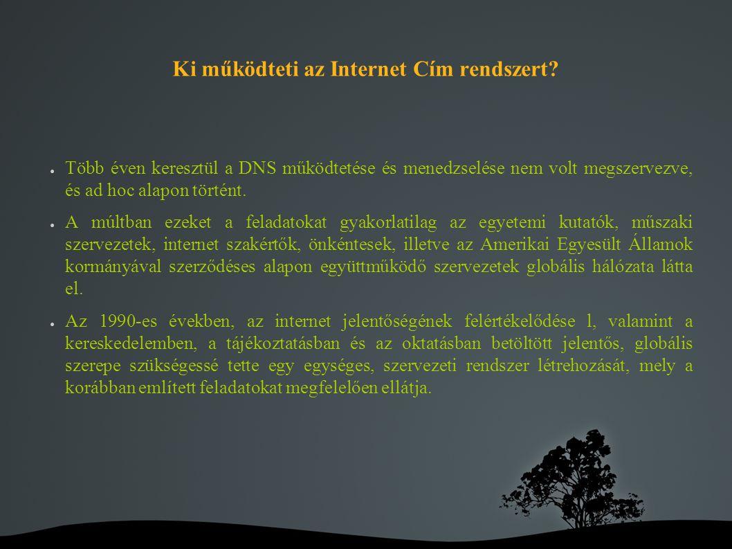 Magyarországon: Internet Szolgáltatók Tanácsa : ● Az Internet Szolgáltatók Tanácsa Tudományos Egyesület (rövid nevén ISZT) 1997-ben alakult abból a célból, hogy a magyar internet szolgáltatók közötti szakmai koordinációt és érdekképviseletet biztosítsa.