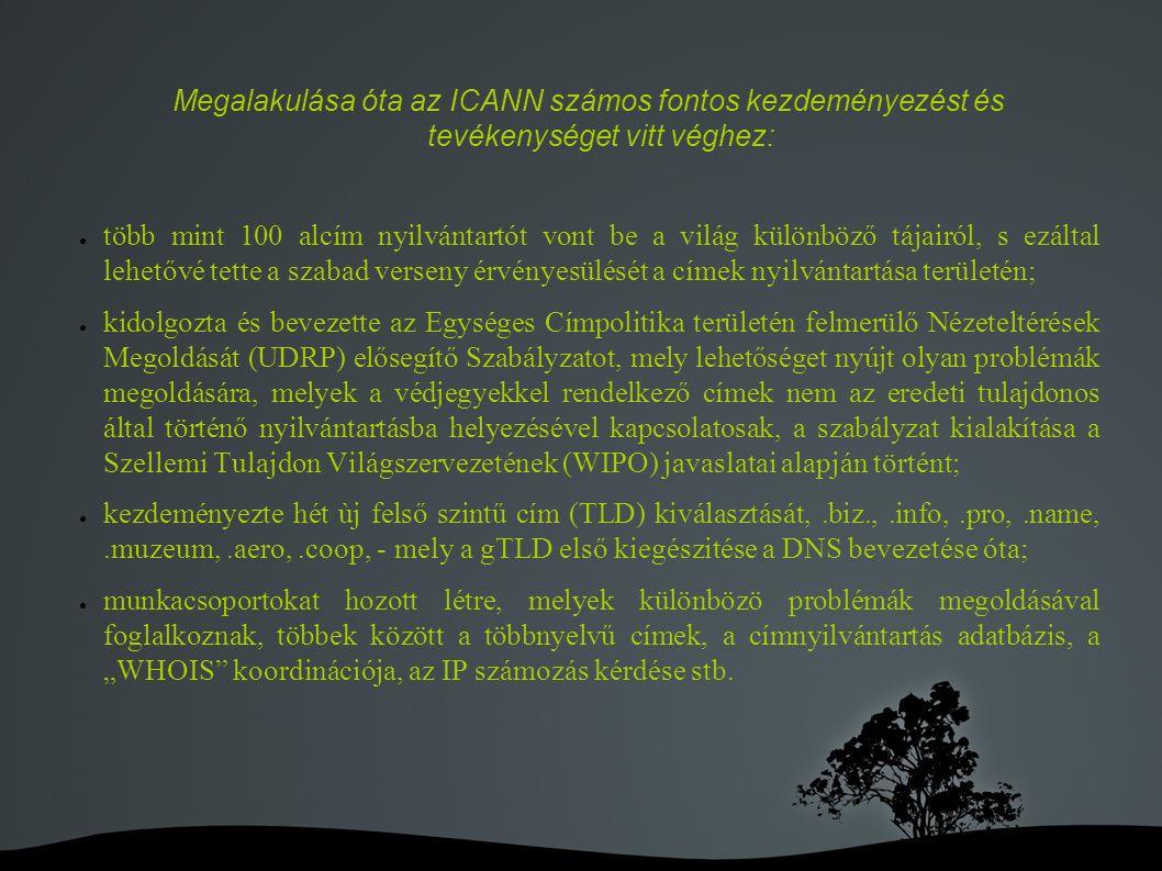 """Megalakulása óta az ICANN számos fontos kezdeményezést és tevékenységet vitt véghez: ● több mint 100 alcím nyilvántartót vont be a világ különböző tájairól, s ezáltal lehetővé tette a szabad verseny érvényesülését a címek nyilvántartása területén; ● kidolgozta és bevezette az Egységes Címpolitika területén felmerülő Nézeteltérések Megoldását (UDRP) elősegítő Szabályzatot, mely lehetőséget nyújt olyan problémák megoldására, melyek a védjegyekkel rendelkező címek nem az eredeti tulajdonos által történő nyilvántartásba helyezésével kapcsolatosak, a szabályzat kialakítása a Szellemi Tulajdon Világszervezetének (WIPO) javaslatai alapján történt; ● kezdeményezte hét ùj felső szintű cím (TLD) kiválasztását,.biz.,.info,.pro,.name,.muzeum,.aero,.coop, - mely a gTLD első kiegészitése a DNS bevezetése óta; ● munkacsoportokat hozott létre, melyek különbözö problémák megoldásával foglalkoznak, többek között a többnyelvű címek, a címnyilvántartás adatbázis, a """"WHOIS koordinációja, az IP számozás kérdése stb."""