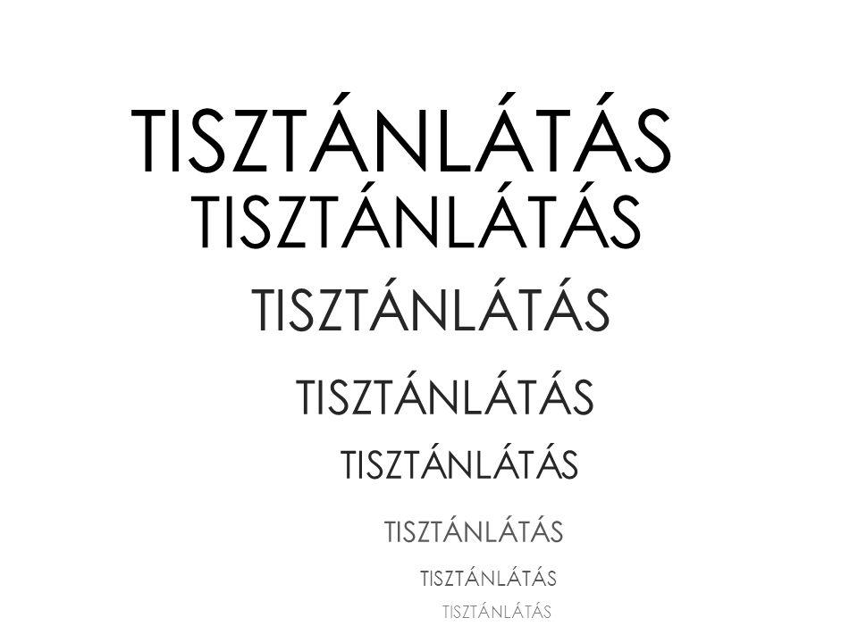 TISZTÁNLÁTÁS