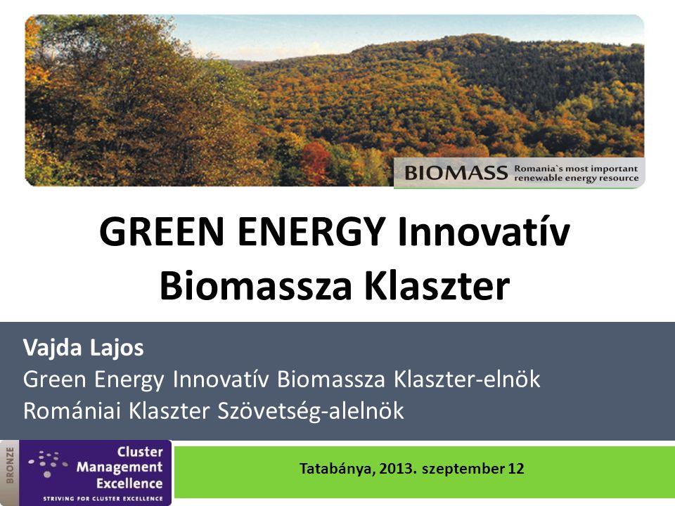 Vajda Lajos Green Energy Innovatív Biomassza Klaszter-elnök Romániai Klaszter Szövetség-alelnök GREEN ENERGY Innovatív Biomassza Klaszter Tatabánya, 2013.