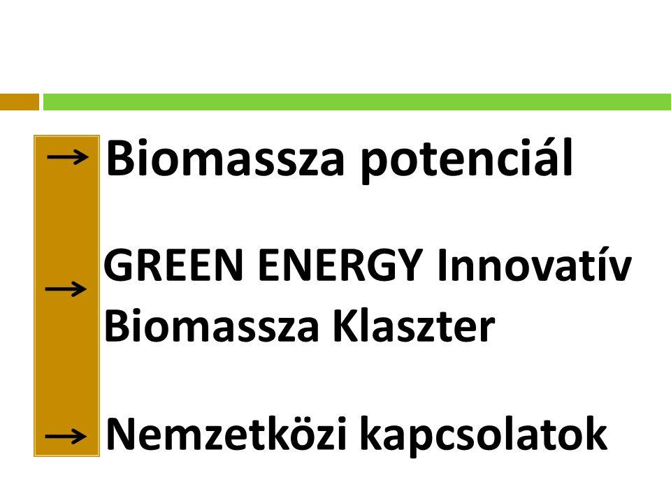 Biomassza potenciál GREEN ENERGY Innovatív Biomassza Klaszter Nemzetközi kapcsolatok