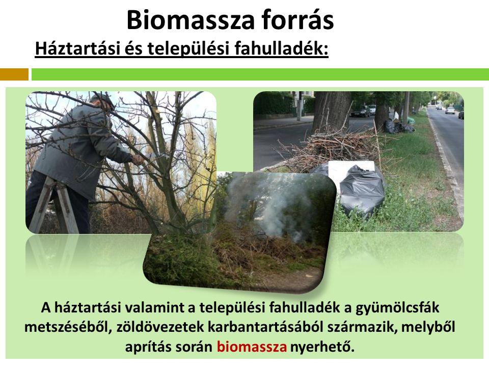 Biomassza forrás Háztartási és települési fahulladék: A háztartási valamint a települési fahulladék a gyümölcsfák metszéséből, zöldövezetek karbantartásából származik, melyből aprítás során biomassza nyerhető.