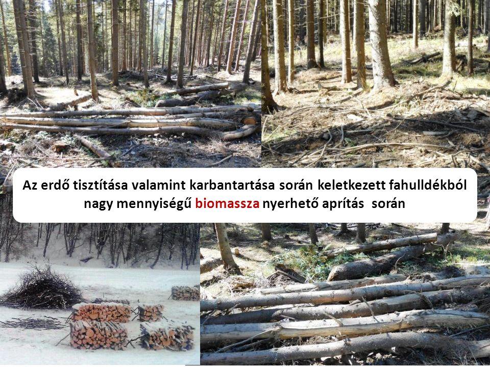 Az erdő tisztítása valamint karbantartása során keletkezett fahulldékból nagy mennyiségű biomassza nyerhető aprítás során