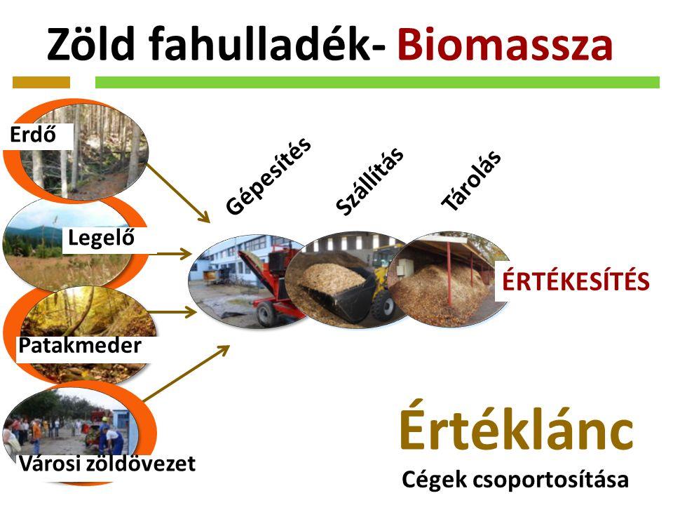 Zöld fahulladék- Biomassza Erdő Legelő Patakmeder Városi zöldövezet Gépesítés Szállítás Tárolás ÉRTÉKESÍTÉS Értéklánc Cégek csoportosítása