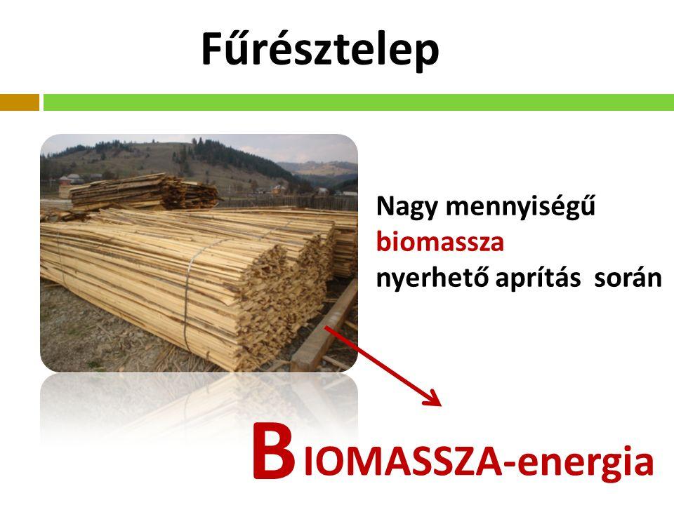 Fűrésztelep IOMASSZA-energia B Nagy mennyiségű biomassza nyerhető aprítás során