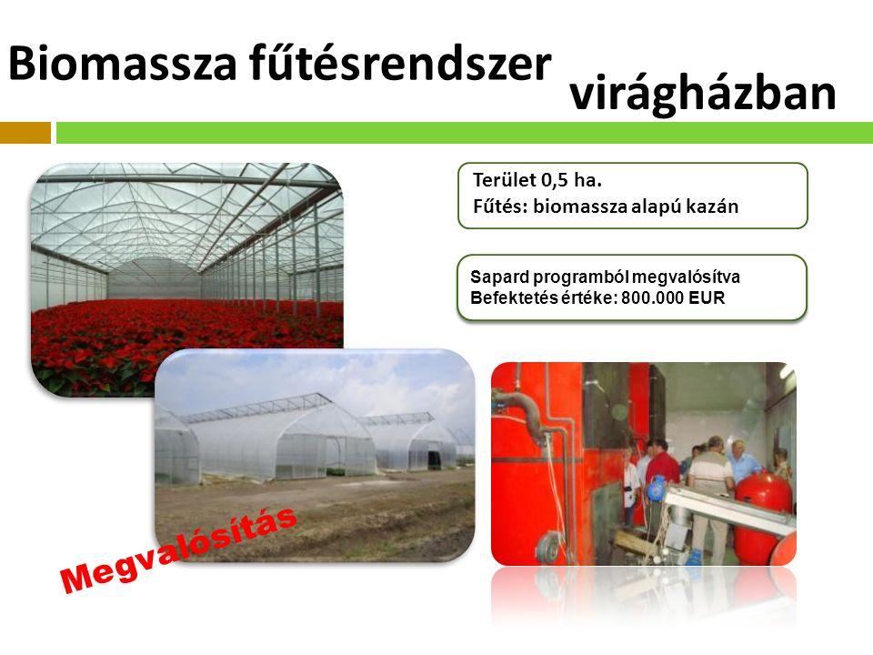 Biomassza fűtésrendszer Sapard programból megvalósítva Befektetés értéke: 800.000 EUR Sapard programból megvalósítva Befektetés értéke: 800.000 EUR Terület 0,5 ha.