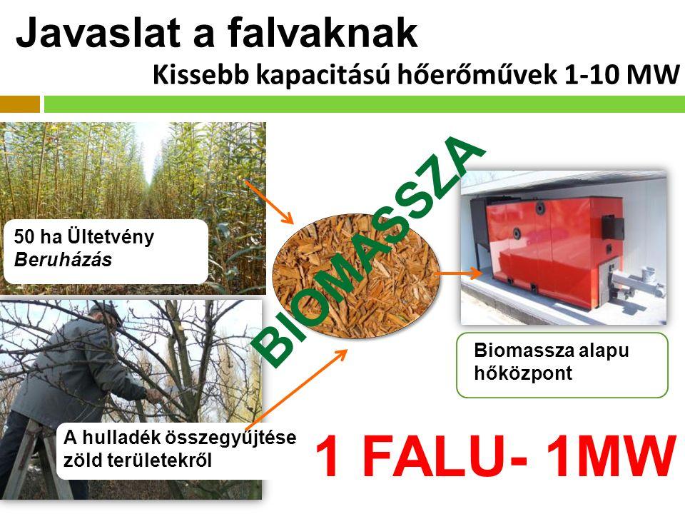 Javaslat a falvaknak 50 ha Ültetvény Beruházás A hulladék összegyűjtése zöld területekről Biomassza alapu hőközpont 1 FALU- 1MW BIOMASSZA Kissebb kapacitású hőerőművek 1-10 MW