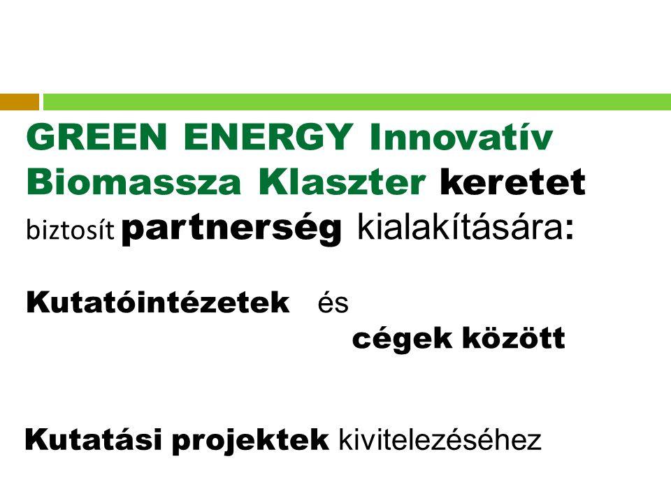 GREEN ENERGY Innovatív Biomassza Klaszter keretet biztosít partnerség kialakítására: Kutatóintézetek és cégek között Kutatási projektek kivitelezéséhez