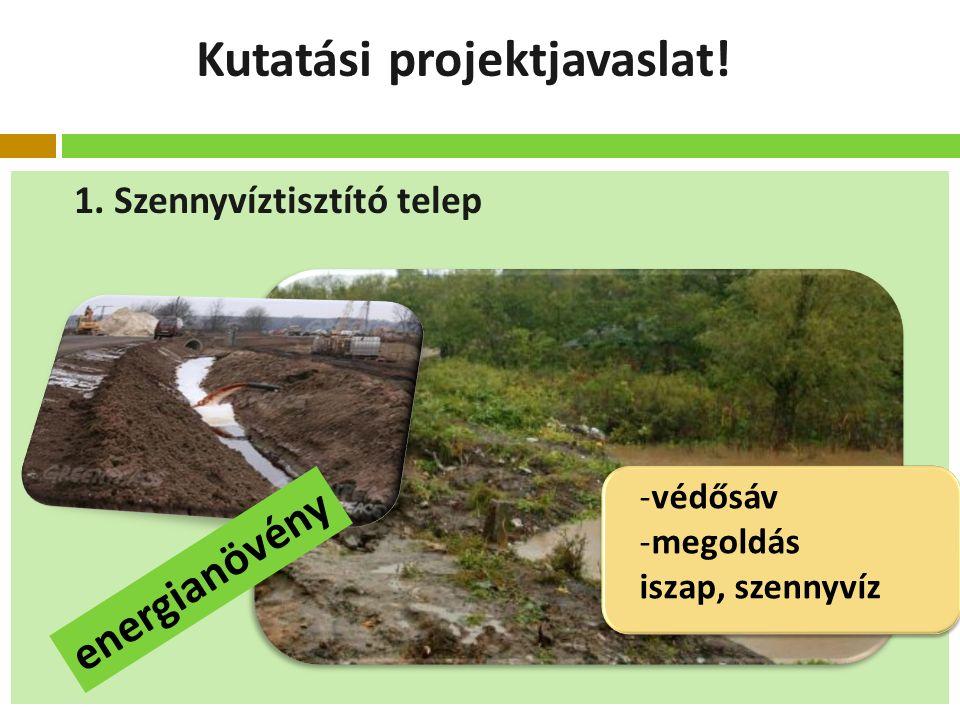 Kutatási projektjavaslat.1.