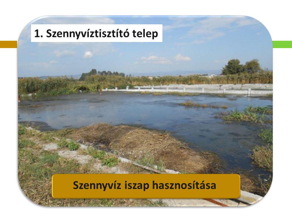 1. Szennyvíztisztító telep Szennyvíz iszap hasznosítása