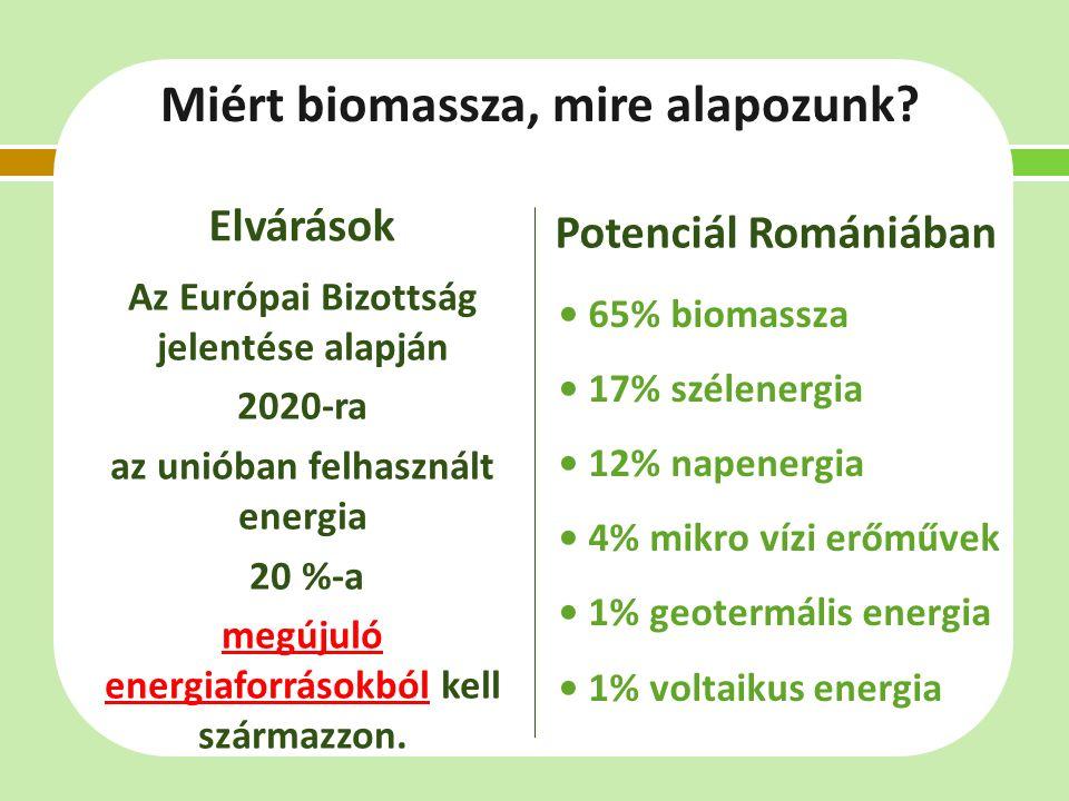 Miért biomassza, mire alapozunk.
