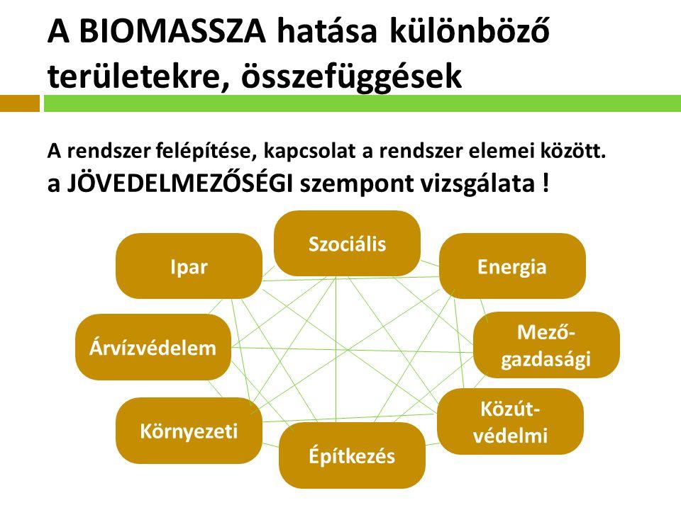 Energia Mező- gazdasági Közút- védelmi Szociális Árvízvédelem Környezeti Építkezés Ipar A BIOMASSZA hatása különböző területekre, összefüggések A rendszer felépítése, kapcsolat a rendszer elemei között.