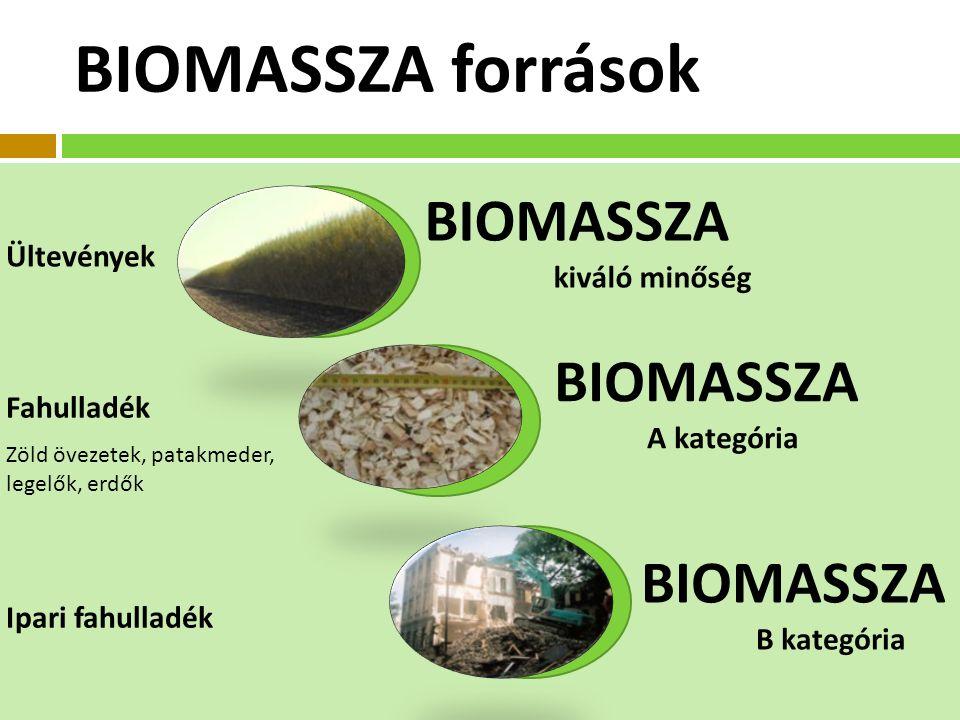 Ültevények Fahulladék Ipari fahulladék Zöld övezetek, patakmeder, legelők, erdők BIOMASSZA kiváló minőség BIOMASSZA A kategória BIOMASSZA B kategória BIOMASSZA források