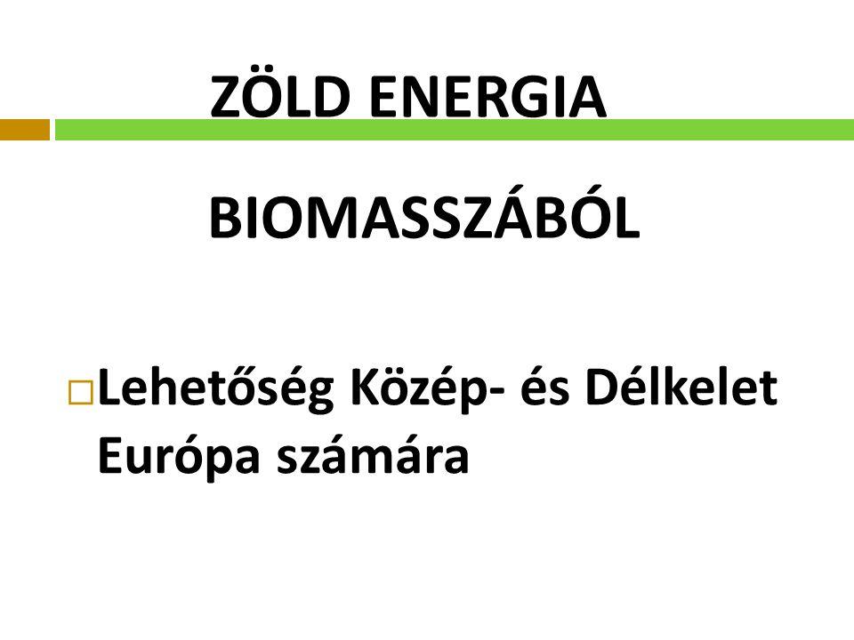 ZÖLD ENERGIA BIOMASSZÁBÓL  Lehetőség Közép- és Délkelet Európa számára