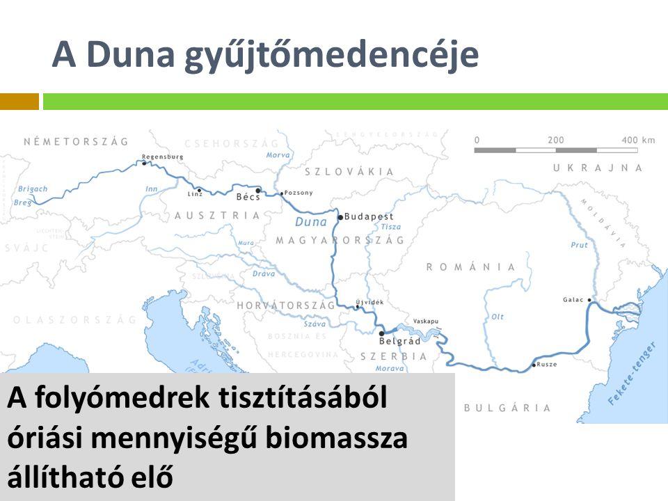 A Duna gyűjtőmedencéje A folyómedrek tisztításából óriási mennyiségű biomassza állítható elő
