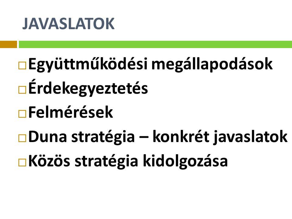 JAVASLATOK  Együttműködési megállapodások  Érdekegyeztetés  Felmérések  Duna stratégia – konkrét javaslatok  Közös stratégia kidolgozása