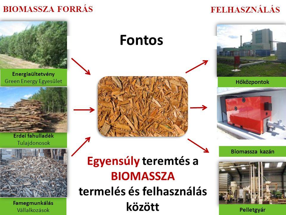 Erdei fahulladék Tulajdonosok Famegmunkálás Vállalkozások Biomassza kazán Pelletgyár Energiaültetvény Green Energy Egyesület BIOMASSZA FORRÁS FELHASZNÁLÁS Hőközpontok Egyensúly teremtés a BIOMASSZA termelés és felhasználás között Fontos