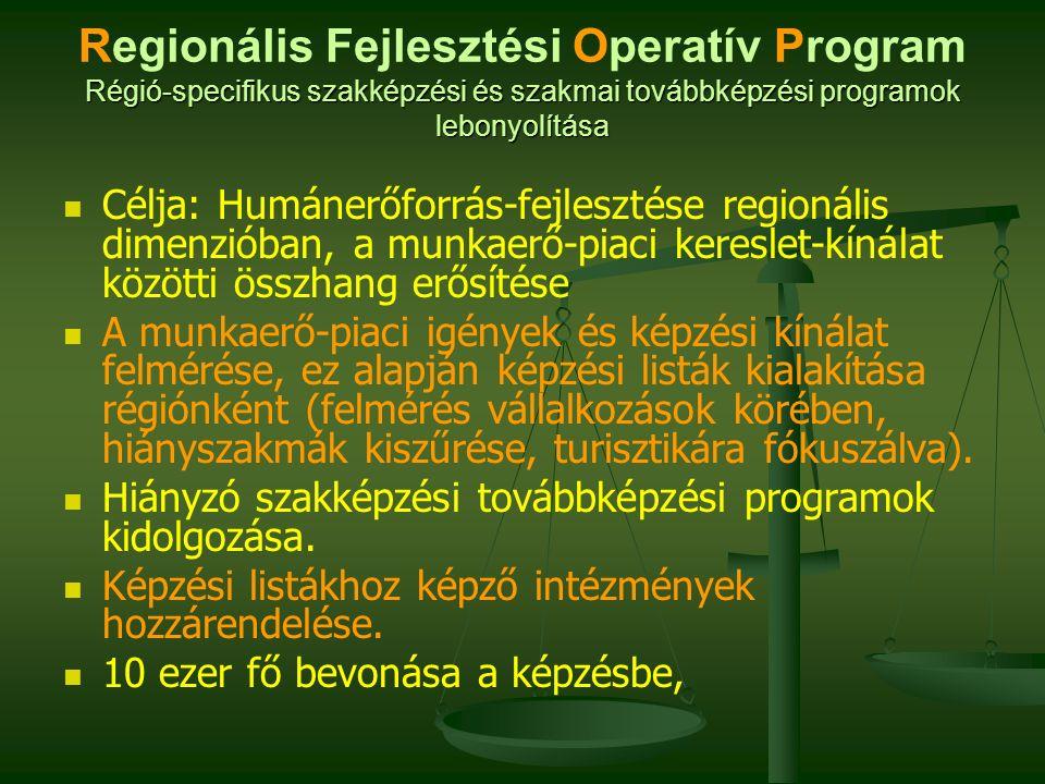 Régió-specifikus szakképzési és szakmai továbbképzési programok lebonyolítása Regionális Fejlesztési Operatív Program Régió-specifikus szakképzési és szakmai továbbképzési programok lebonyolítása Célja: Humánerőforrás-fejlesztése regionális dimenzióban, a munkaerő-piaci kereslet-kínálat közötti összhang erősítése A munkaerő-piaci igények és képzési kínálat felmérése, ez alapján képzési listák kialakítása régiónként (felmérés vállalkozások körében, hiányszakmák kiszűrése, turisztikára fókuszálva).