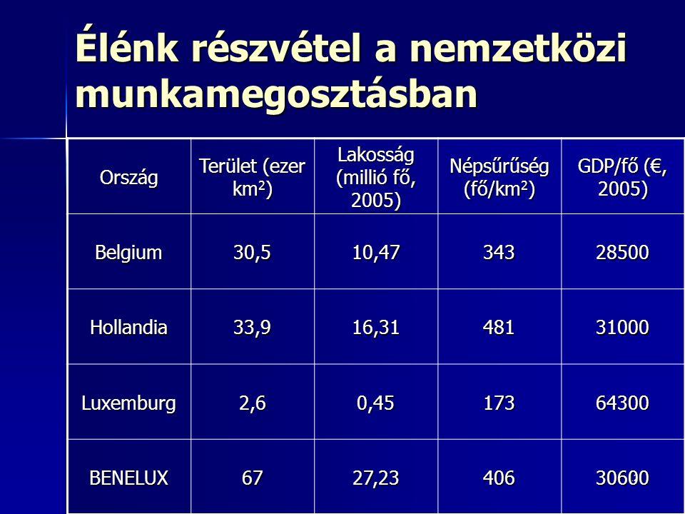 12 Élénk részvétel a nemzetközi munkamegosztásban Ország Terület (ezer km 2 ) Lakosság (millió fő, 2005) Népsűrűség (fő/km 2 ) GDP/fő (€, 2005) Belgium30,510,4734328500 Hollandia33,916,3148131000 Luxemburg2,60,4517364300 BENELUX6727,2340630600