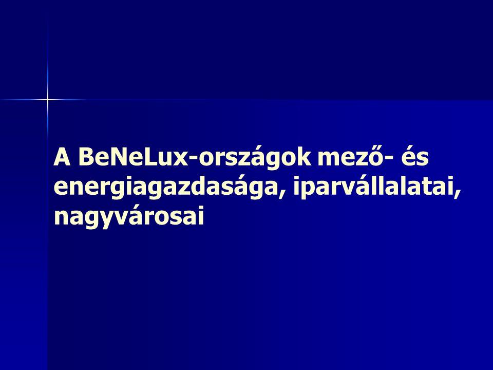 A BeNeLux-országok mező- és energiagazdasága, iparvállalatai, nagyvárosai