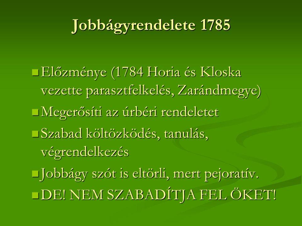 Jobbágyrendelete 1785 Előzménye (1784 Horia és Kloska vezette parasztfelkelés, Zarándmegye) Előzménye (1784 Horia és Kloska vezette parasztfelkelés, Zarándmegye) Megerősíti az úrbéri rendeletet Megerősíti az úrbéri rendeletet Szabad költözködés, tanulás, végrendelkezés Szabad költözködés, tanulás, végrendelkezés Jobbágy szót is eltörli, mert pejoratív.