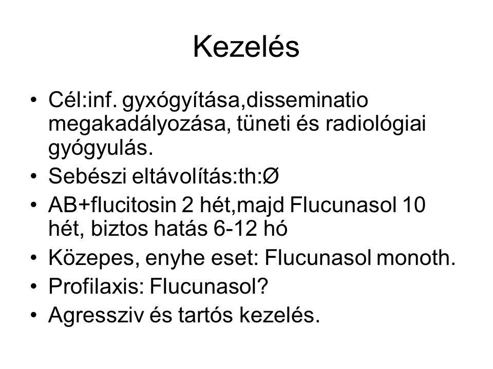 Kezelés Cél:inf. gyxógyítása,disseminatio megakadályozása, tüneti és radiológiai gyógyulás.