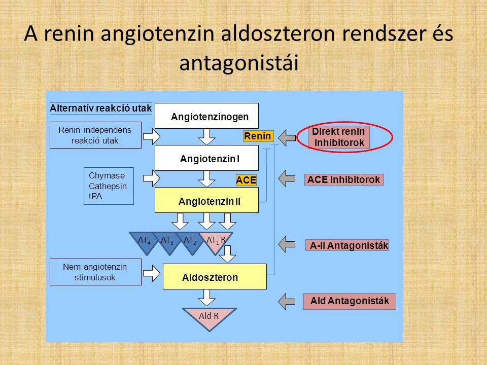 A renin angiotenzin aldoszteron rendszer és antagonistái Angiotenzinogen Angiotenzin I Angiotenzin II Aldoszteron A-II Antagonisták ACE Inhibitorok ACE Renin Ald Antagonisták Direkt renin Inhibitorok Alternatív reakció utak AT 4 AT 3 AT 2 AT 1 R Chymase Cathepsin tPA Nem angiotenzin stimulusok Renin independens reakció utak Ald R