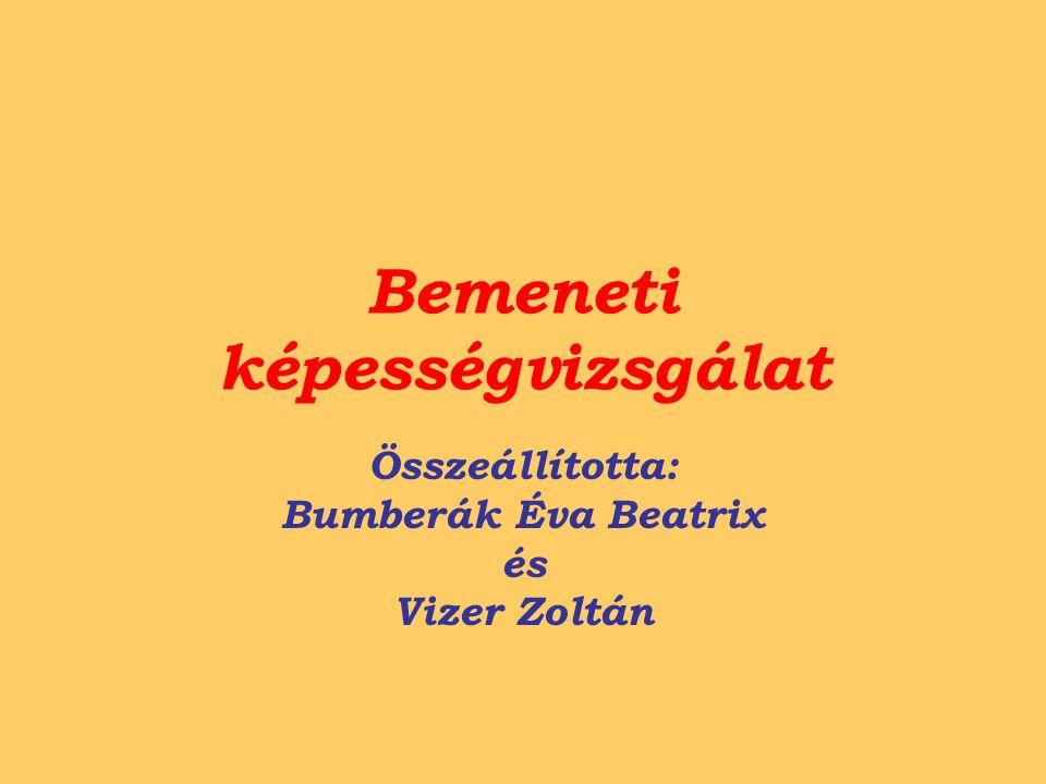 Bemeneti képességvizsgálat Összeállította: Bumberák Éva Beatrix és Vizer Zoltán