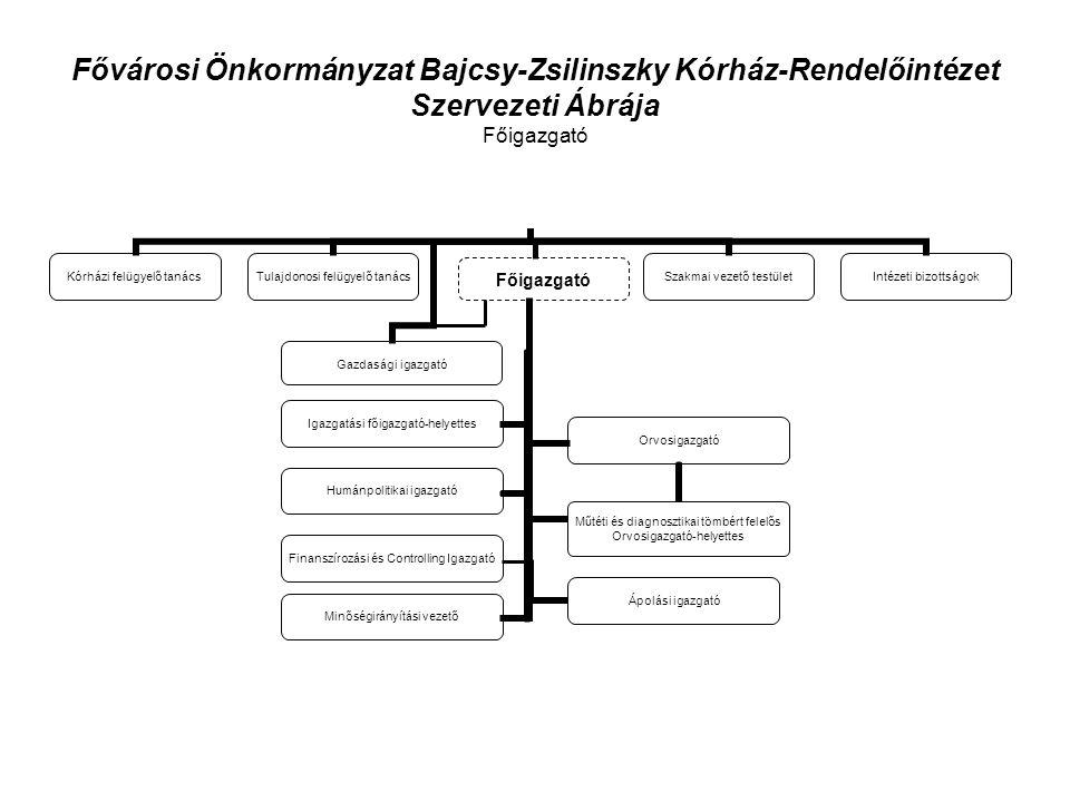 Fővárosi Önkormányzat Bajcsy-Zsilinszky Kórház-Rendelőintézet Szervezeti Ábrája Főigazgató Finanszírozási és Controlling Igazgató
