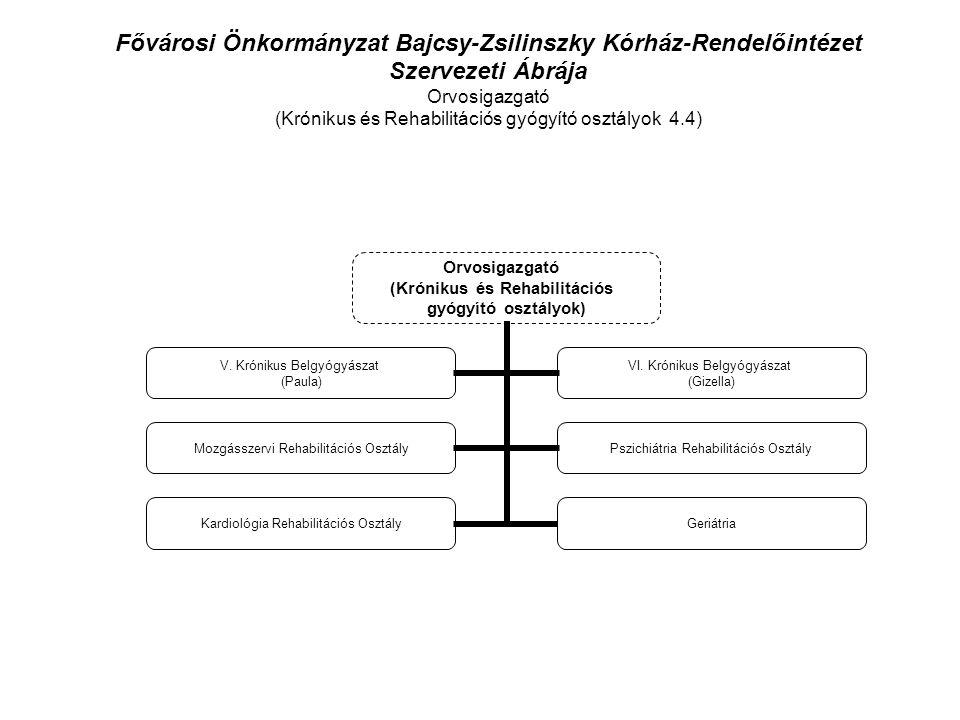 Fővárosi Önkormányzat Bajcsy-Zsilinszky Kórház-Rendelőintézet Szervezeti Ábrája Orvosigazgató (Krónikus és Rehabilitációs gyógyító osztályok 4.4) Orvosigazgató (Krónikus és Rehabilitációs gyógyító osztályok) V.