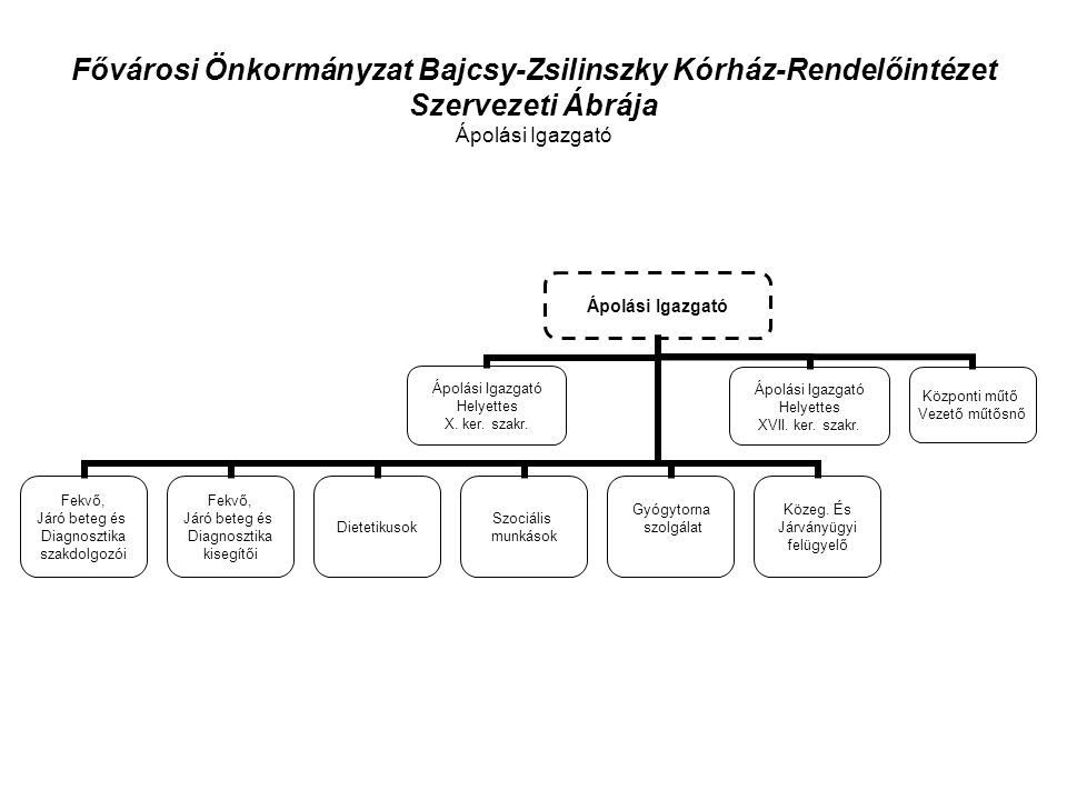 Fővárosi Önkormányzat Bajcsy-Zsilinszky Kórház-Rendelőintézet Szervezeti Ábrája Ápolási Igazgató Ápolási Igazgató Fekvő, Járó beteg és Diagnosztika szakdolgozói Fekvő, Járó beteg és Diagnosztika kisegítői Dietetikusok Szociális munkások Gyógytorna szolgálat Közeg.