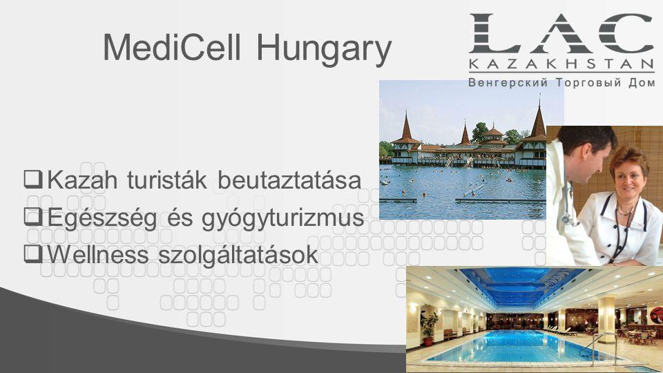 MediCell Hungary  Kazah turisták beutaztatása  Egészség és gyógyturizmus  Wellness szolgáltatások