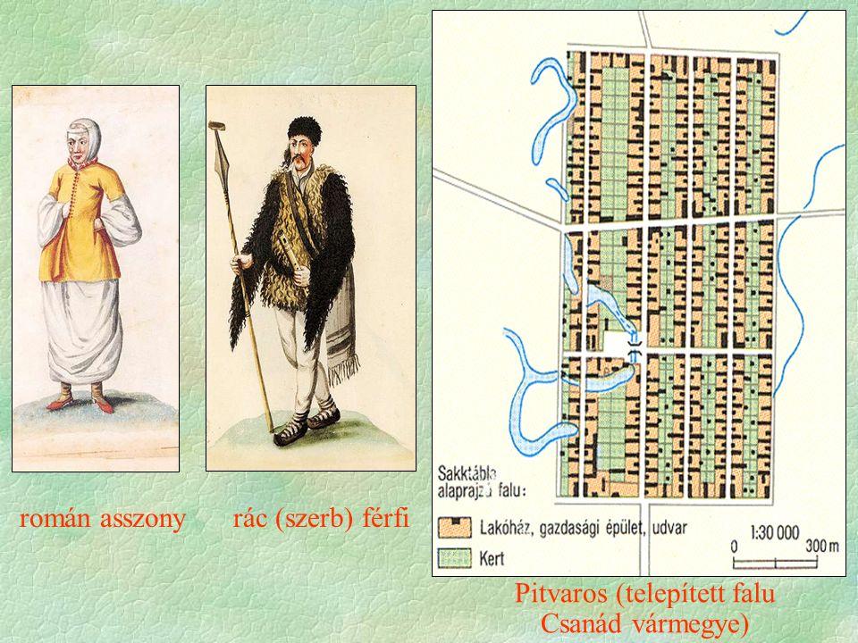 román asszony rác (szerb) férfi Pitvaros (telepített falu Csanád vármegye)