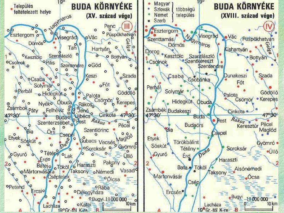 belső népmozgások: (migráció) okai  lakatlan területek benépesítése, kedvezőbb életfeltételek,  adókedvezmények  Résztvevők: Magyarok, szlovákok, románok, ruténok (ruszin),  Spontán betelepedések - tényezők  Ritkán lakott volt a hódoltság területe,  Nyitott határ,  Peremvidékek túlnépesedése,  Betelepülők: Szlovákok, románok, ruténok (ruszin), cigányok, zsidók,  Szervezett telepítések: a Habsburg reformprogram része  célja stabil adóalanyok biztosítása,  módja adókedvezmények, adómentességek,  Telepített népcsoportok  német: Tolna-, Baranya megye: mintagazdaság, hitel, hibrid vetőmag,  szerbek: Határőr-vidék: kollektív kiváltságok  Az ország etnikai összetétele megváltozik (Abszolút kisebbségbe kerül a magyarság saját hazáján belül)