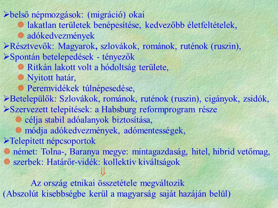  belső népmozgások: (migráció) okai  lakatlan területek benépesítése, kedvezőbb életfeltételek,  adókedvezmények  Résztvevők: Magyarok, szlovákok,