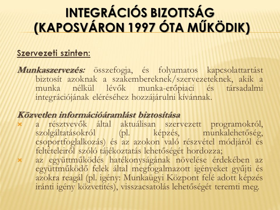 INTEGRÁCIÓS BIZOTTSÁG (KAPOSVÁRON 1997 ÓTA MŰKÖDIK) Szervezeti szinten: Munkaszervezés Munkaszervezés: összefogja, és folyamatos kapcsolattartást biztosít azoknak a szakembereknek/szervezeteknek, akik a munka nélkül lévők munka-erőpiaci és társadalmi integrációjának eléréséhez hozzájárulni kívánnak.