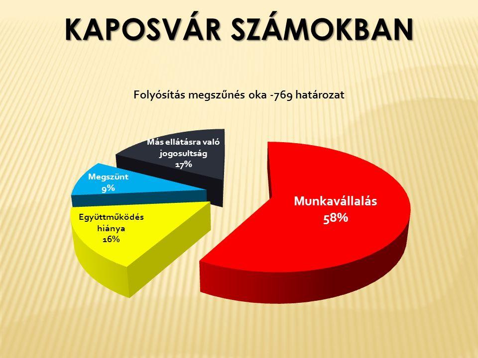 KAPOSVÁR SZÁMOKBAN