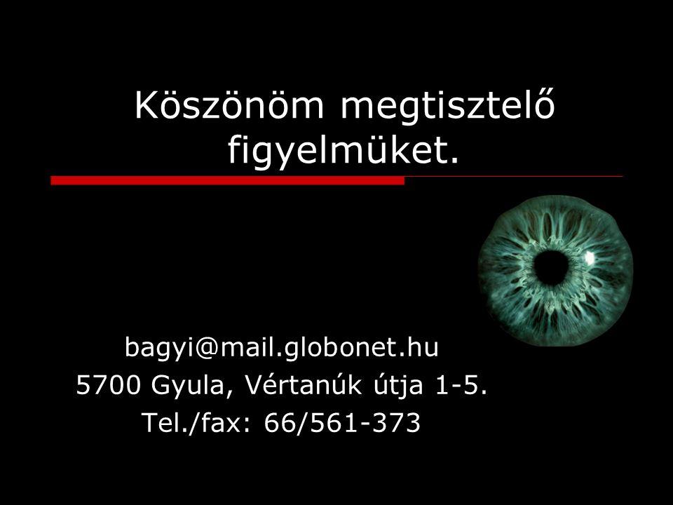 Köszönöm megtisztelő figyelmüket. bagyi@mail.globonet.hu 5700 Gyula, Vértanúk útja 1-5.