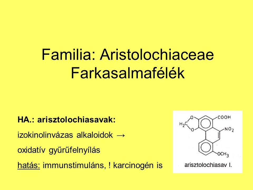 Familia: Aristolochiaceae Farkasalmafélék HA.: arisztolochiasavak: izokinolinvázas alkaloidok → oxidatív gyűrűfelnyílás hatás: immunstimuláns, .