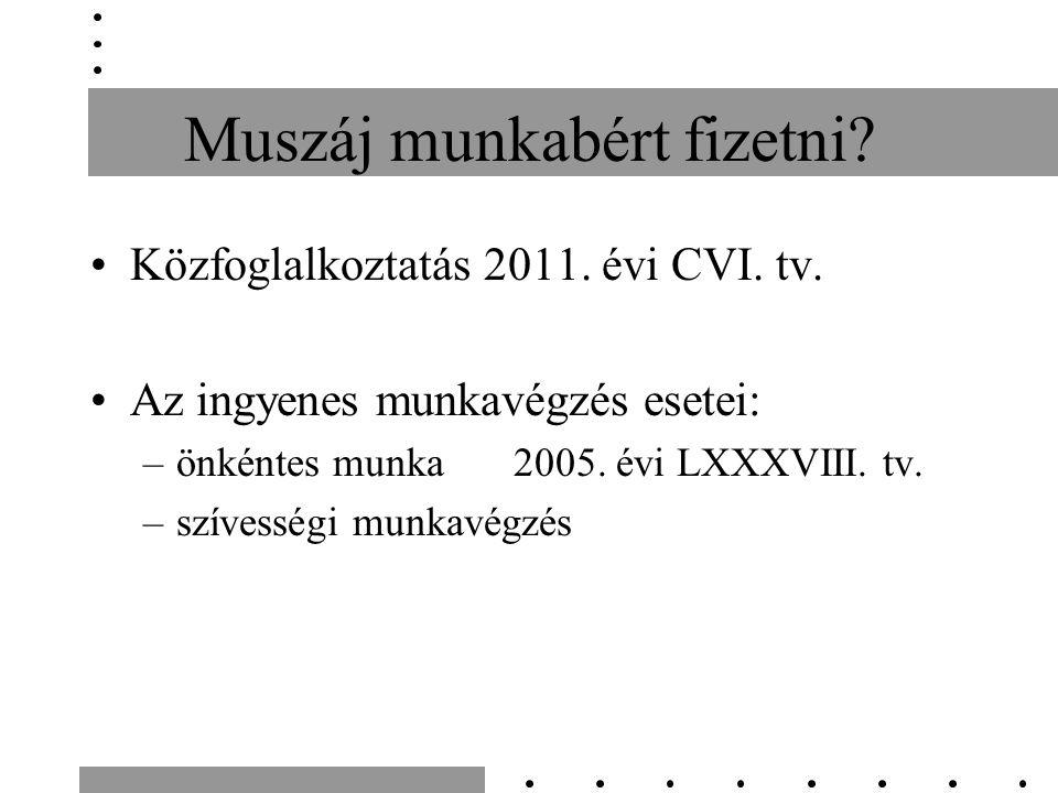 Muszáj munkabért fizetni.Közfoglalkoztatás 2011. évi CVI.