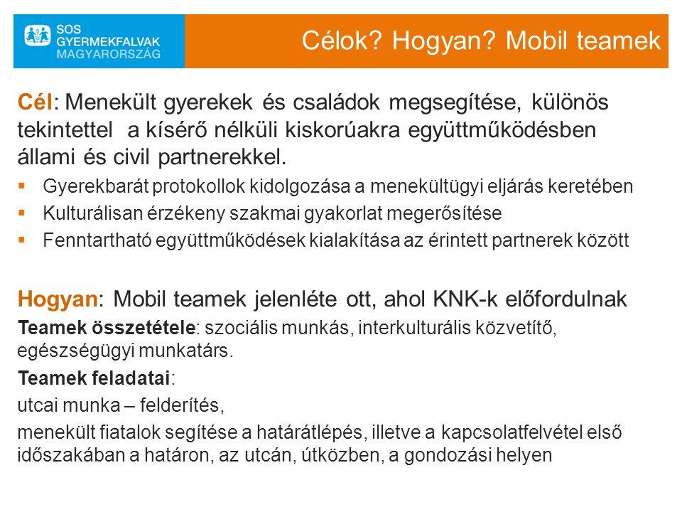 Együttműködő partnerek SOS Projekt irányítása Mobil teamek működtetése Protokollok kidolgozása a gyermeki jogok érvényesítésével SOS Projekt irányítása Mobil teamek működtetése Protokollok kidolgozása a gyermeki jogok érvényesítésével MENEDÉK Képzések a mobil team és a lakásotthonok munkatársai számára Szakértelem MENEDÉK Képzések a mobil team és a lakásotthonok munkatársai számára Szakértelem SZGYF és KNK lakásotthonok KNK-k ellátása, nevelése Gyermekvédelmi gyámság SZGYF és KNK lakásotthonok KNK-k ellátása, nevelése Gyermekvédelmi gyámság Civil önkéntes partnerek Civil önkéntes partnerek Gyámhi vatalok GYJSZ BÁH EMMI Gyermekjogi képviselők ORFK