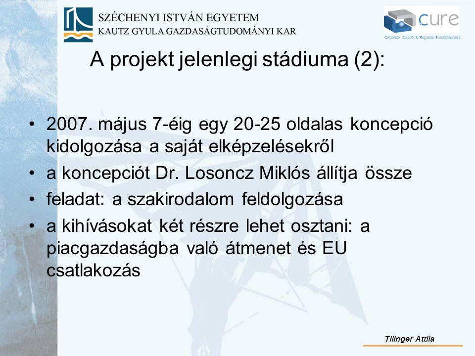 A projekt jelenlegi stádiuma (2): 2007. május 7-éig egy 20-25 oldalas koncepció kidolgozása a saját elképzelésekről a koncepciót Dr. Losoncz Miklós ál