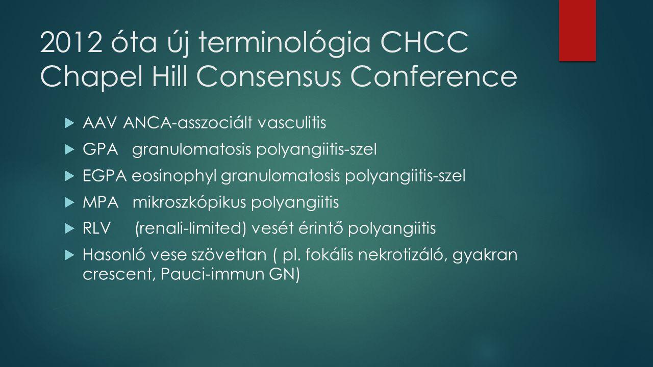 2012 óta új terminológia CHCC Chapel Hill Consensus Conference  AAV ANCA-asszociált vasculitis  GPA granulomatosis polyangiitis-szel  EGPA eosinophyl granulomatosis polyangiitis-szel  MPA mikroszkópikus polyangiitis  RLV (renali-limited) vesét érintő polyangiitis  Hasonló vese szövettan ( pl.