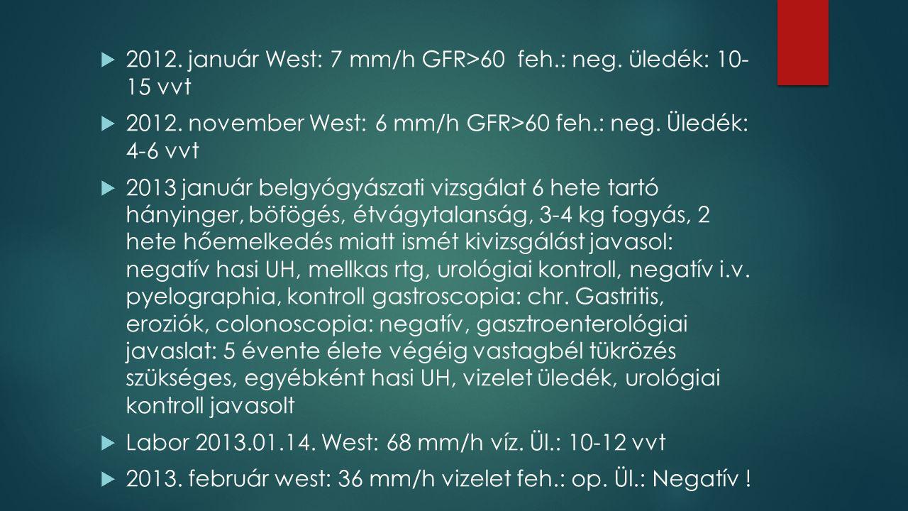  2012. január West: 7 mm/h GFR>60 feh.: neg. üledék: 10- 15 vvt  2012.