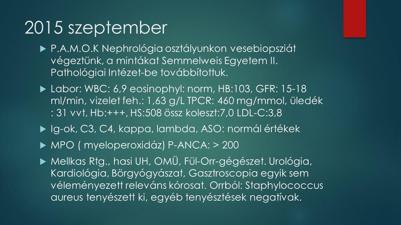 2015 szeptember  P.A.M.O.K Nephrológia osztályunkon vesebiopsziát végeztünk, a mintákat Semmelweis Egyetem II.