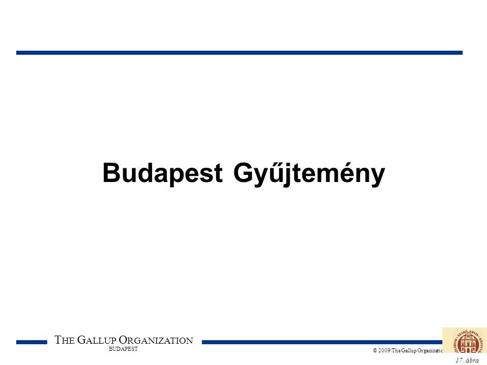 17. ábra T HE G ALLUP O RGANIZATION BUDAPEST © 2009 The Gallup Organization Budapest Gyűjtemény