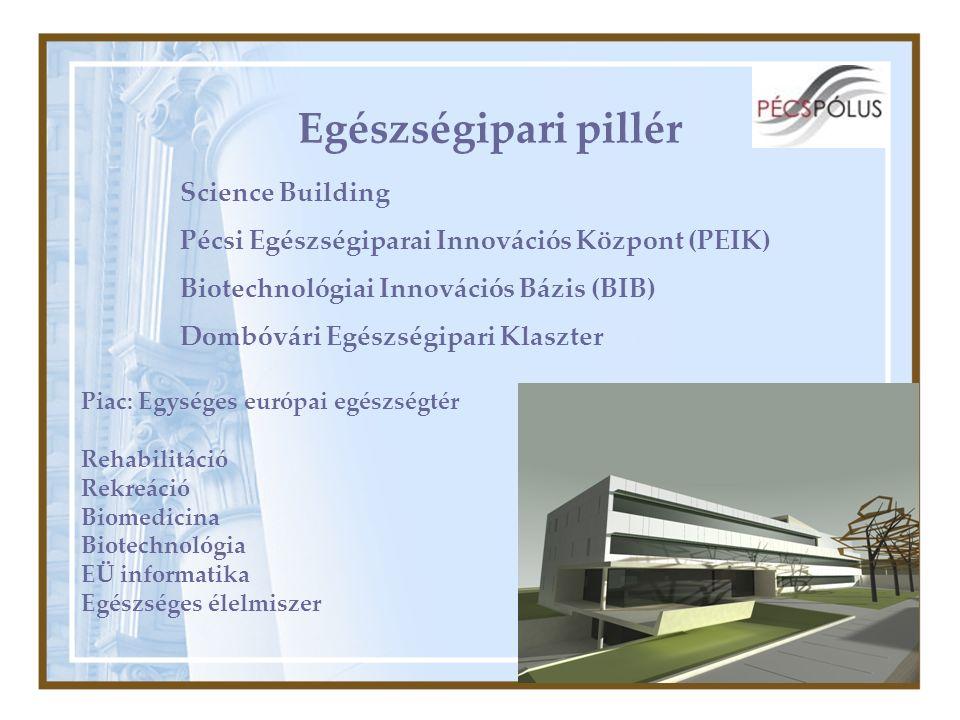 Egészségipari pillér Science Building Pécsi Egészségiparai Innovációs Központ (PEIK) Biotechnológiai Innovációs Bázis (BIB) Dombóvári Egészségipari Klaszter Piac: Egységes európai egészségtér Rehabilitáció Rekreáció Biomedicina Biotechnológia EÜ informatika Egészséges élelmiszer