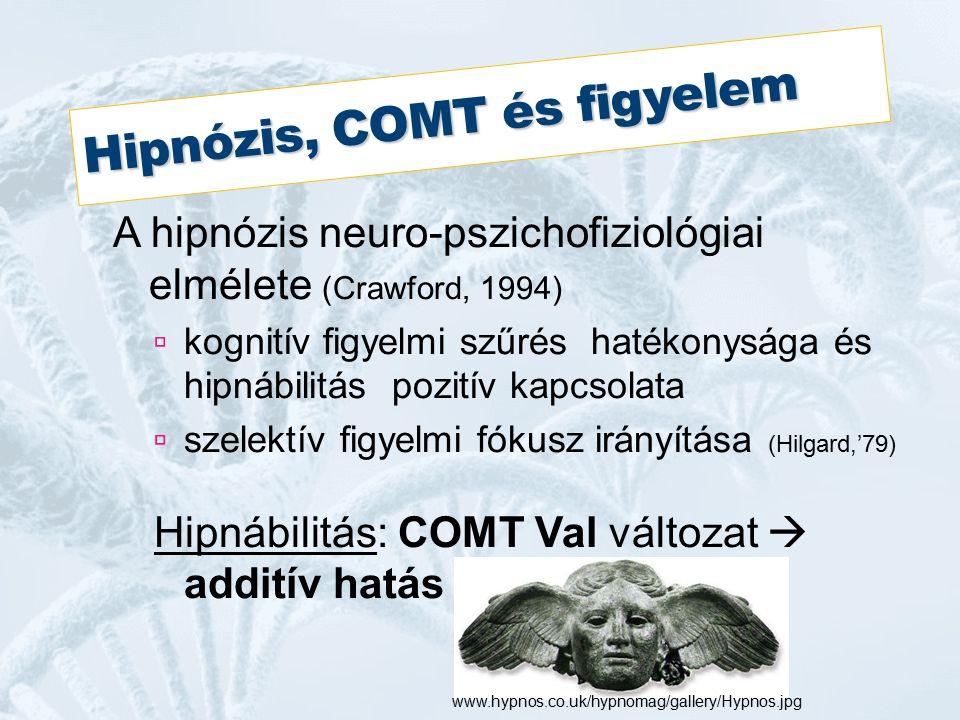 Hipnózis, COMT és figyelem A hipnózis neuro-pszichofiziológiai elmélete (Crawford, 1994)  kognitív figyelmi szűrés hatékonysága és hipnábilitás pozitív kapcsolata  szelektív figyelmi fókusz irányítása (Hilgard,'79) Hipnábilitás: COMT Val változat  additív hatás www.hypnos.co.uk/hypnomag/gallery/Hypnos.jpg