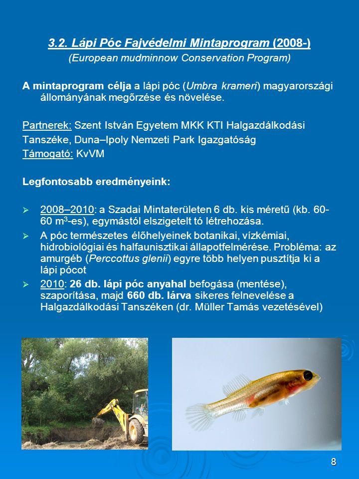 8 3.2. Lápi Póc Fajvédelmi Mintaprogram (2008-) (European mudminnow Conservation Program) A mintaprogram célja a lápi póc (Umbra krameri) magyarország